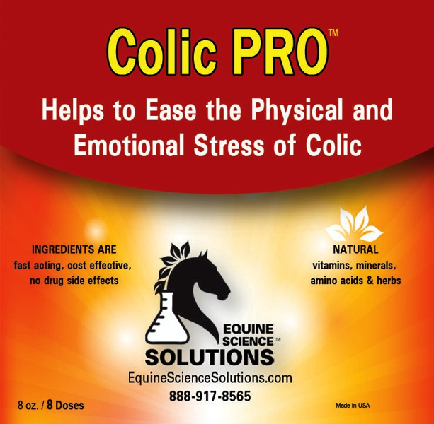 Fast Treatment of colic in horses