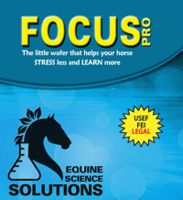 Horse Stress Less and Focus More
