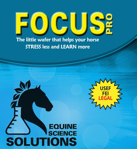 Focus PRO will Have Your Horse Stress Less and Focus More