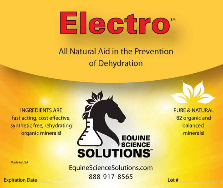 Electro will improve your horse's performance and recover after stress